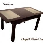 Simona-tr2